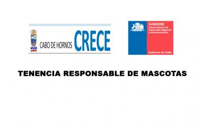 TENENCIA RESPONSABLE DE MASCOTAS